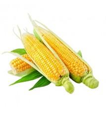 Кукурузное масло 3,0дм3